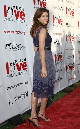 Kate Walsh 壁紙 possibly with a sign, a カクテル dress, and a dress titled Kate Walsh