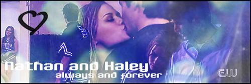 Love Naley