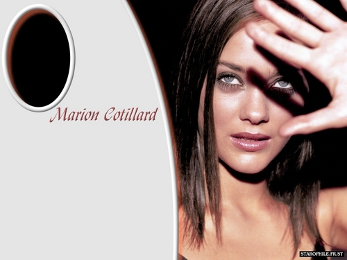 Marion Cotillard wallpaper possibly containing a portrait called Marion