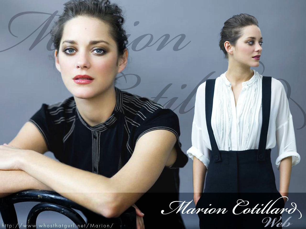 Marion Cotillard - Photo Actress