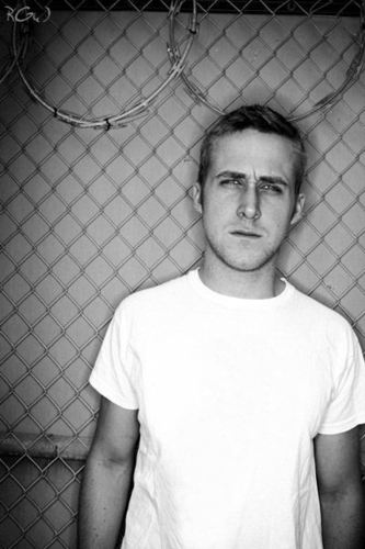 Ryan Gosling wallpaper containing a chainlink fence titled Ryan