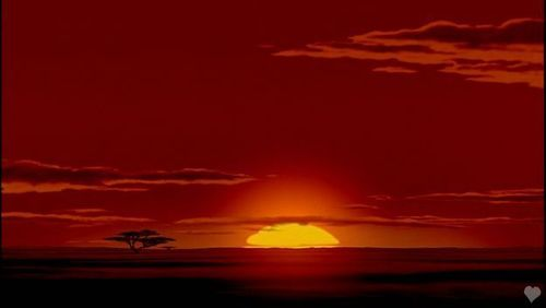 the lion king images the lion king wallpaper and