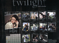 Twilight Calendar Key - twilight-series photo