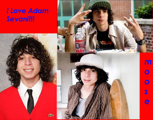 i lovee adam sevani