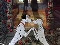 101-dalmatians - 101 Dalmatians screencap
