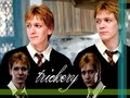 Fred &amp; George - fred-and-george-weasley wallpaper