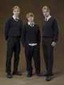 Fred, Ron & George - fred-and-george-weasley photo