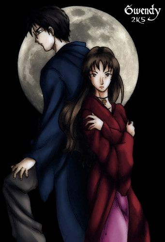 Harry and Hermione wallpaper possibly containing anime called H/H