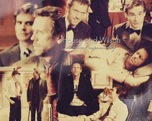 House and Wilson