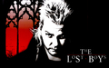 David - the-lost-boys-movie wallpaper