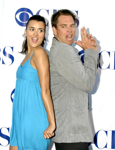Michael Weatherly wallpaper probably containing a well dressed person called Michael Weatherly and Cote de Pablo