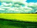 Photography - photography photo