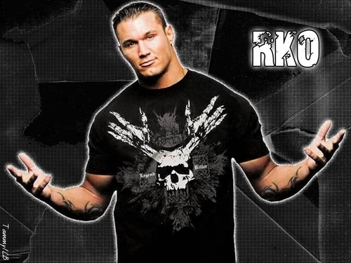 Randy Orton wallpaper probably with a sign entitled Randy Orton