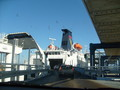 Scandlines Ferry - public-transport wallpaper