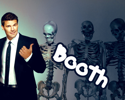 Seeley Booth kertas dinding probably with a business suit called Seeley Booth
