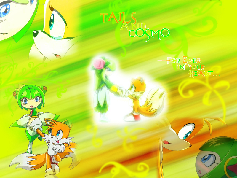 Tails and cosmo tails and cosmo 1922057 800 600 jpg