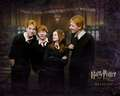 The Weasley - fred-and-george-weasley wallpaper