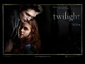 Twilight the movie - twilight-series photo