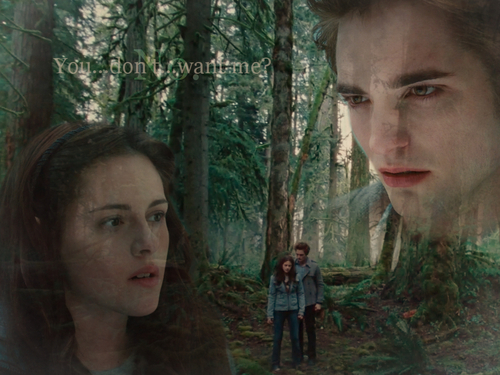 http://images1.fanpop.com/images/photos/1900000/Twilight-twilight-series-1912937-500-375.jpg