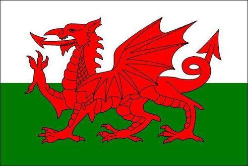 Welsh Flag