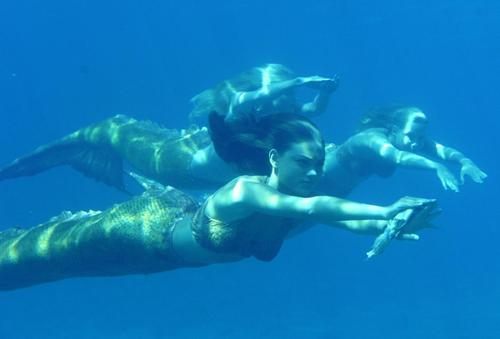 mermaids - h2o-mermaids Photo