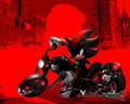 shadow biker - shadow-the-hedgehog photo