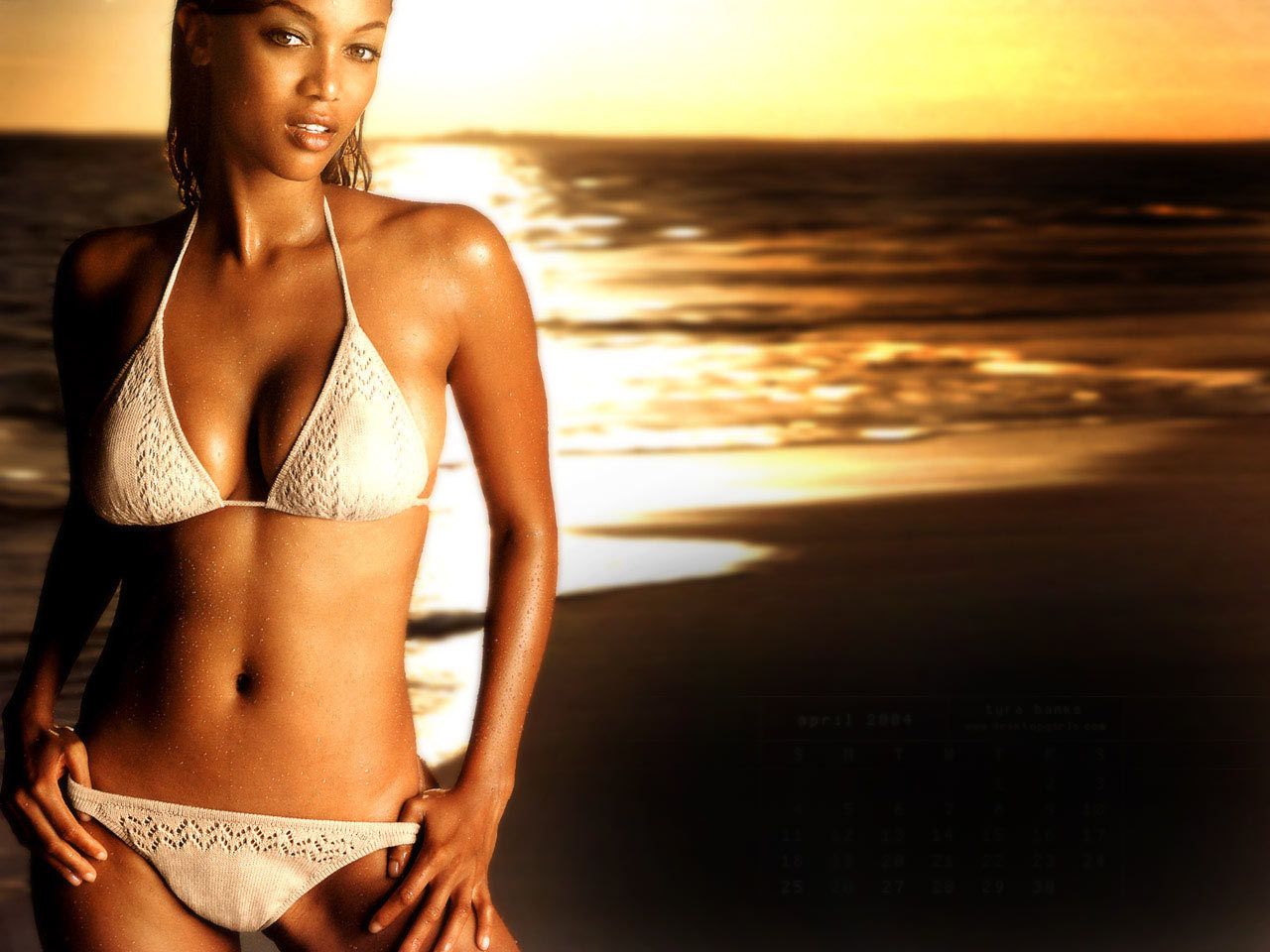 http://images1.fanpop.com/images/photos/1900000/swim-wear-tyra-banks-1963569-1280-960.jpg