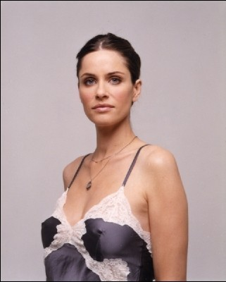 Amanda Peet 壁纸 probably containing attractiveness and a portrait titled Amanda