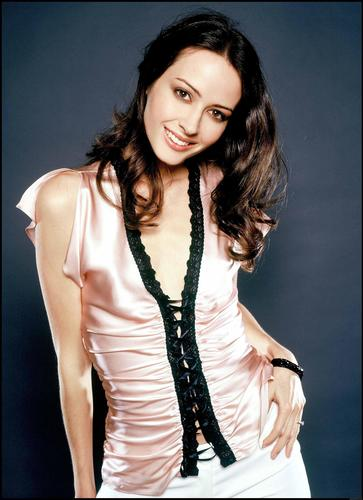 Amy Acker achtergrond containing a blouse, a well dressed person, and an outerwear entitled Amy Acker
