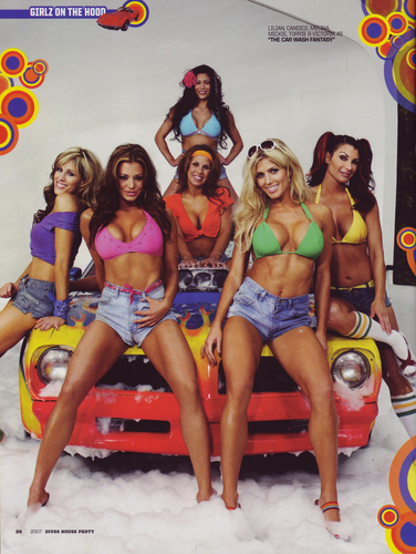 WWE Divas wallpaper probably containing a swimsuit and a bikini called Divas Car Wish