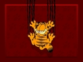 garfield - Garfield wallpapers wallpaper