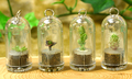 Keychain Plants - keychains photo