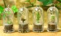 Keychain Plants