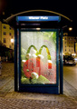 McDonald's: Freshness - mcdonalds photo