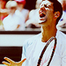 Novak - novak-djokovic icon