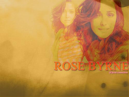 Rose वॉलपेपर