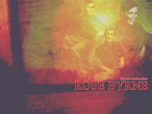 Rose দেওয়ালপত্র