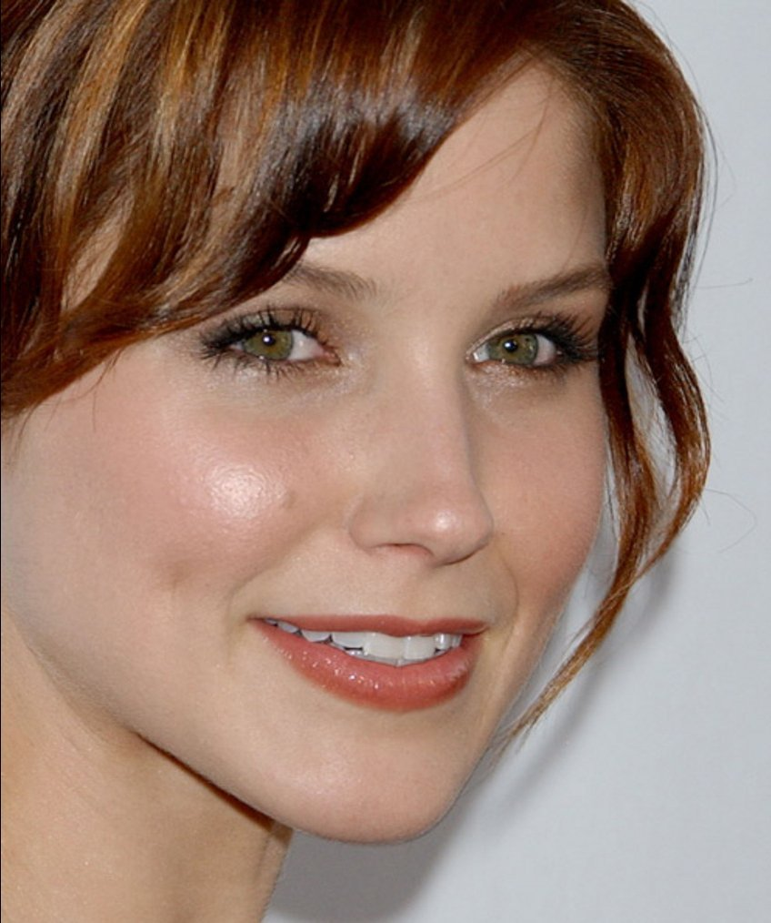 Sophia Bush - Wallpaper Actress