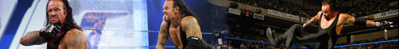 Nash vs. Taker vs. HHH Undertaker-banner-undertaker-2053207-800-100