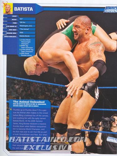 WWE Magazine Spring prebiyu '07