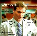 wilson - dr-james-e-wilson fan art