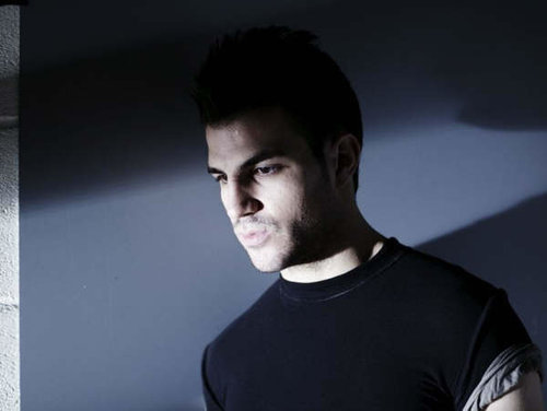 Cesc Fabregas - cesc-fabregas Photo