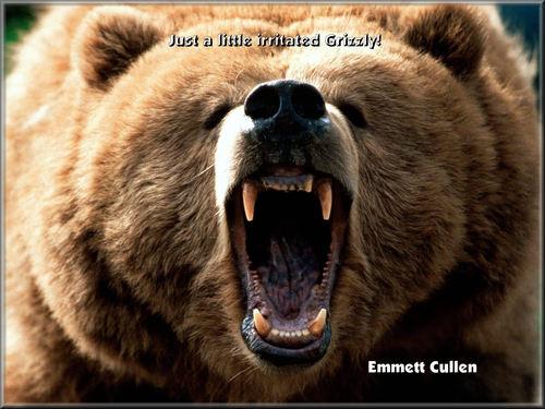 Emmett's lil friend