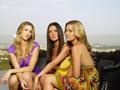Lauren,Audrina&Whitney