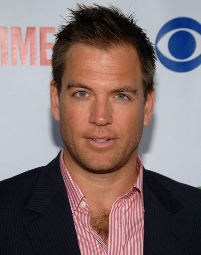 Michael Weatherly kertas dinding containing a business suit, a suit, and a garis halus, pinstripe titled Michael