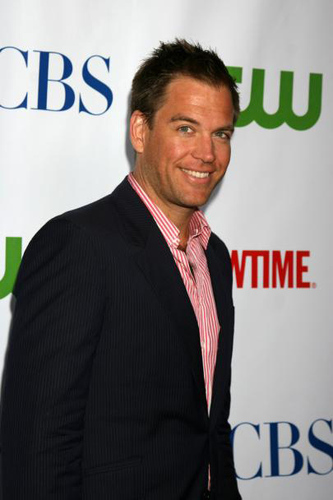 Michael Weatherly wallpaper with a business suit entitled Michael