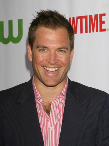 Michael Weatherly wallpaper containing a business suit, a suit, and a three piece suit entitled Michael