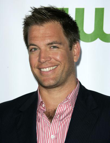 Michael Weatherly wallpaper containing a business suit, a suit, and a three piece suit called Michael