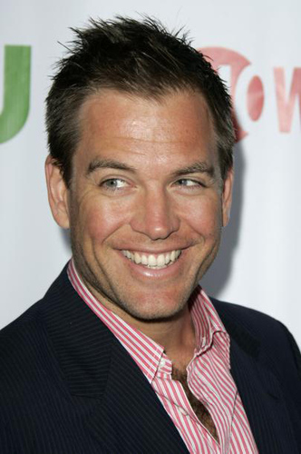 Michael Weatherly kertas dinding containing a business suit and a suit entitled Michael