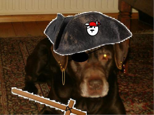 Nelson the black pirate
